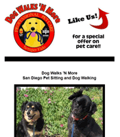 San Diego dog walker, custom Facebook landing page