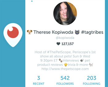 what is periscope?