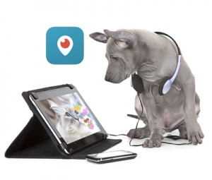 periscope for pet sitters and other pet businesses