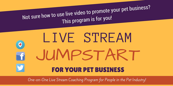 live stream consulting for your pet business
